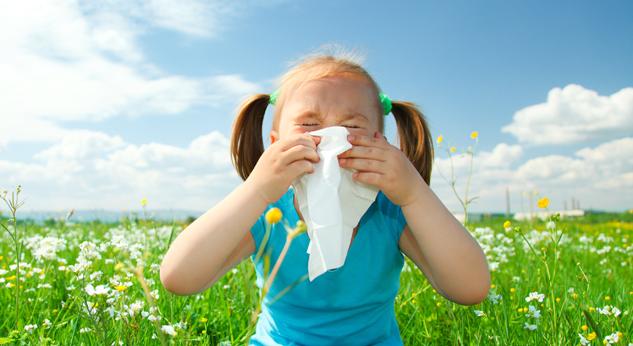 Diez consejos para sobrevivir a la alergia